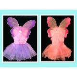 CTP313- 1 BUTTERFLY BALLERINA DRESS UP SET