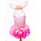 CTU6008PK- BUNNY DRESS UP  SET