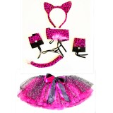 CTU8421-PINK CHEETAH DRESS UP SET