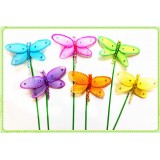 """D129-6"""" DRAGONFLY PICK"""