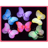 "NL2411M-10"" BUTTERFLY DECOR"