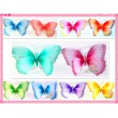 "RS23700-20"" PAINT BUTTERFLY DECO"