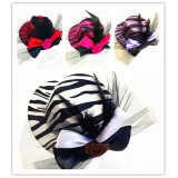 CTR027 ZEBRA MINI HAT CLIP